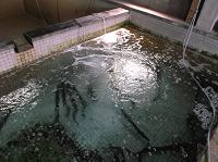 鱧の畜養水槽